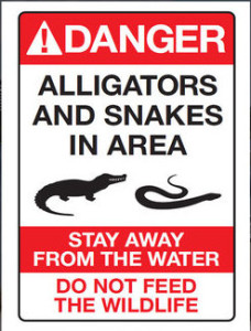 disney-alligator-snakes-sign_1466201805884_1459254_ver1.0_640_360